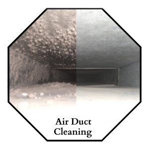 Allen carpet cleaning
